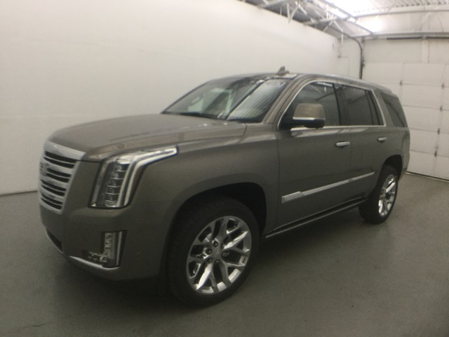 new 2018 cadillac escalade platinum edition 4d sport utility in waterbury 2931c18 blasius. Black Bedroom Furniture Sets. Home Design Ideas